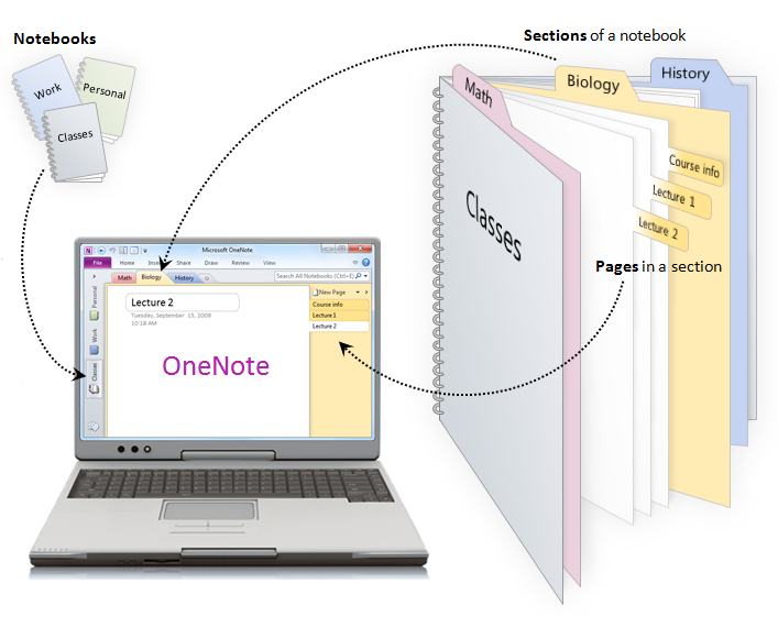 OneNote binder concept